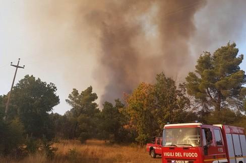 Il bosco brucia di nuovo, vasto fronte del fuoco