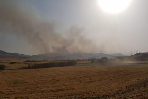 L'inferno di fuoco nel bosco diventa polemica politica