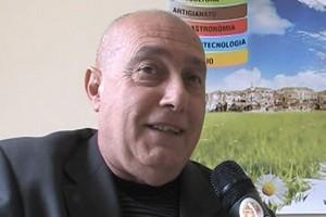Vito Martemucci
