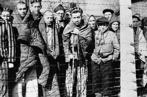 olocausto e disabilità
