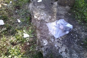 rifiuti pulicchio