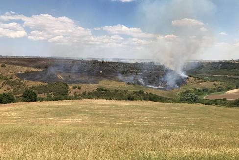 Incendi: le fiamme minacciano il Bosco