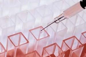 Coronavirus: un caso a Gravina
