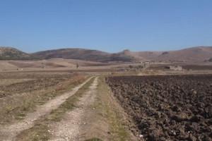 Rubati trattori e mezzi agricoli