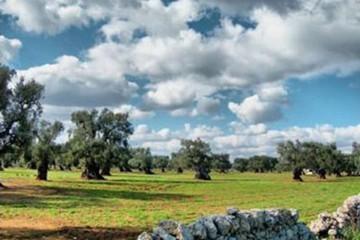 Paesaggio Puglia