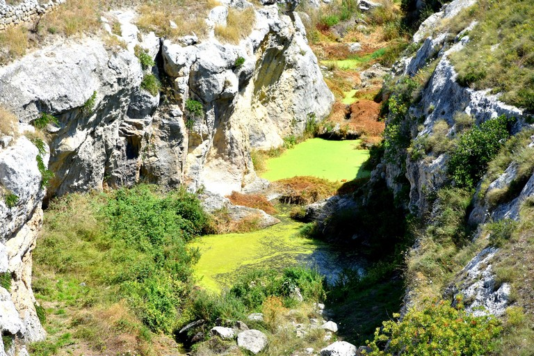Torrente Gravina verde