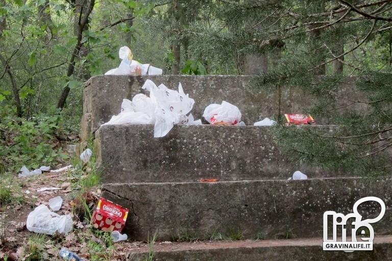 rifiuti bosco comunale