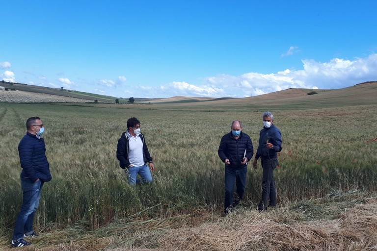 funzionari della regione fanno sopralluogo su campi danneggiati